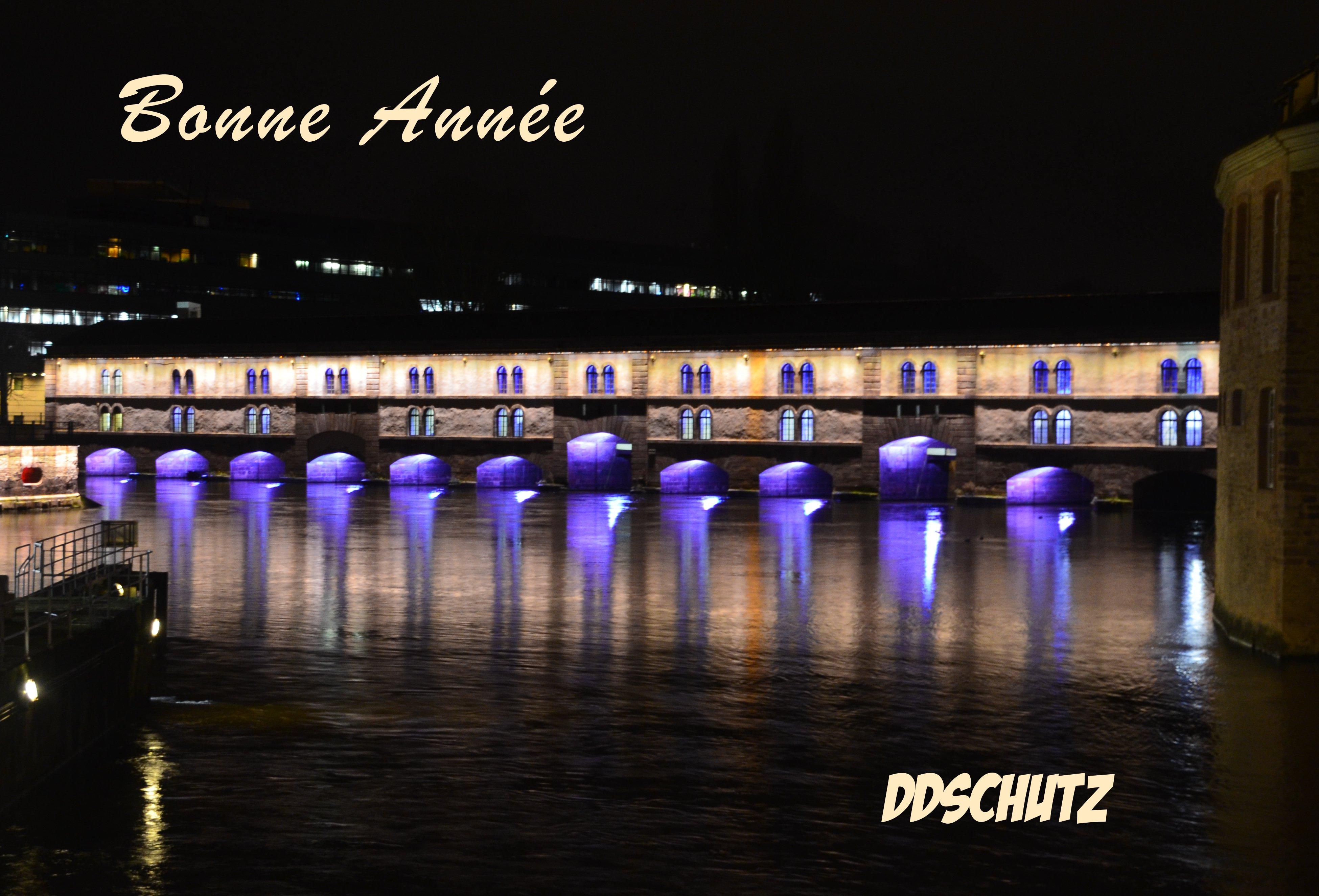 bonne-annee-2015-ddschutz